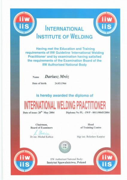 Dyplom-IWP-2-1